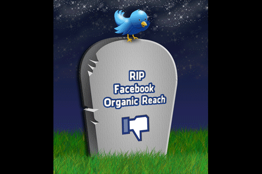 facebook business organic reach marketing